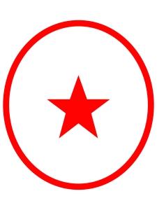 tss-homepage-star-icon